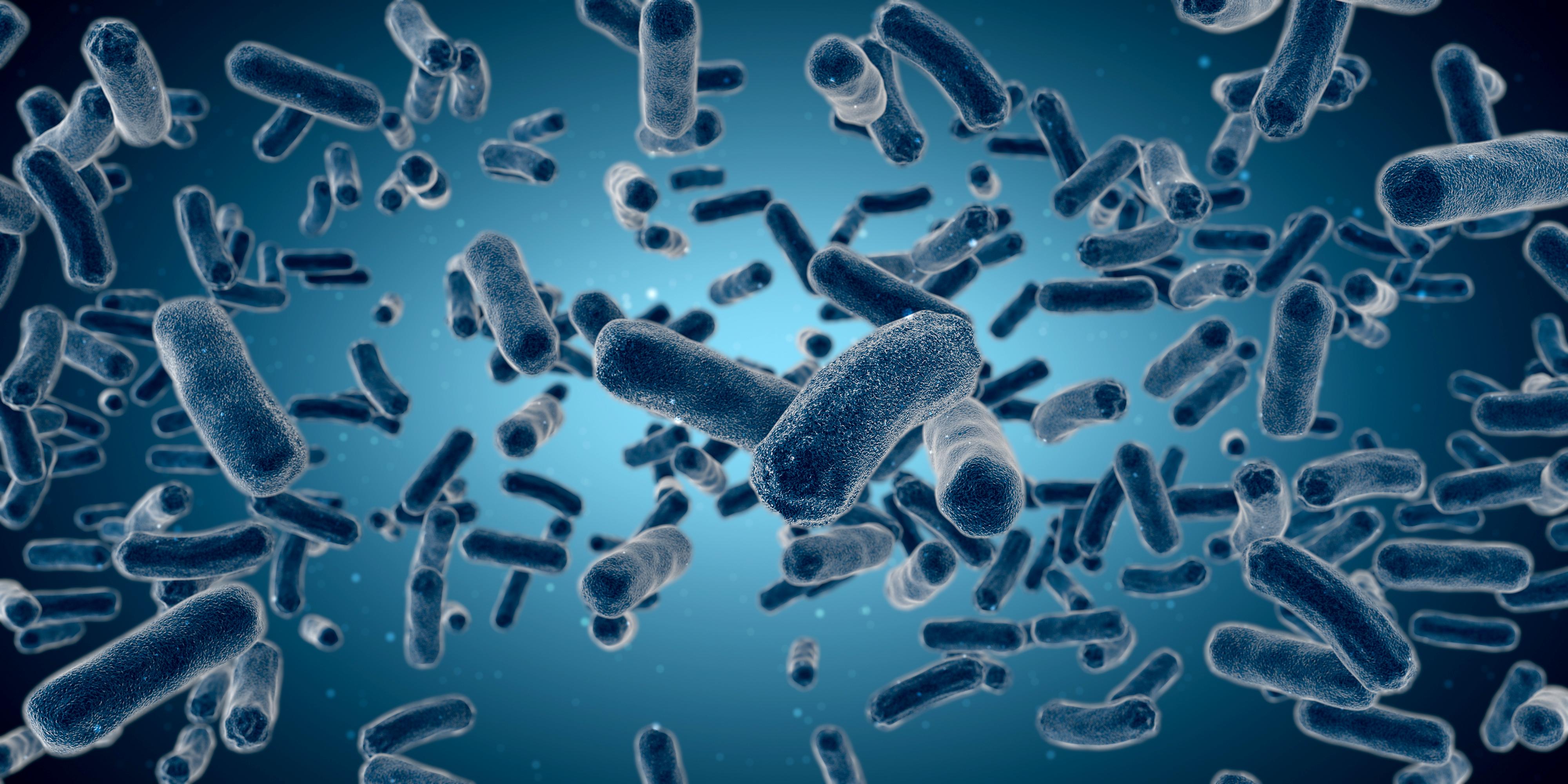 这种黏糊糊的细菌,减肥竟有如此威力?| Nature子刊