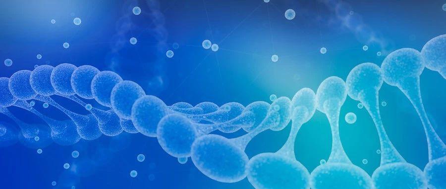 β地中海贫血基因疗法上市在即,定价可能高达210万美元